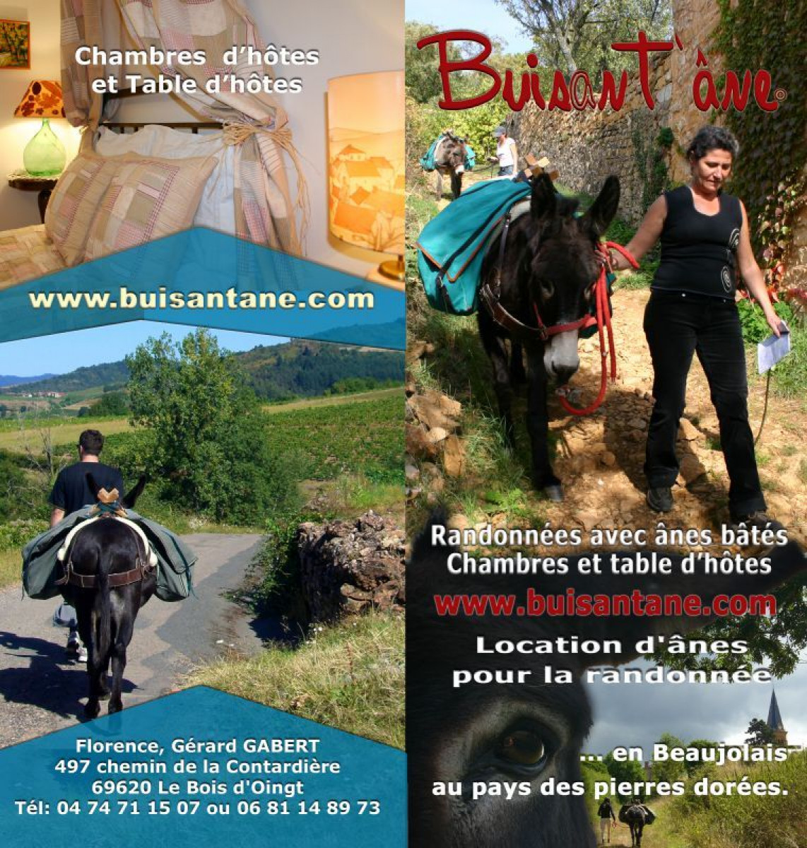 Buisant'âne, Guest house and pack donkeys